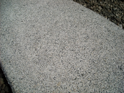 宮城県多賀城市/洗出しの表面/エクステリア&ガーデンのジーランド
